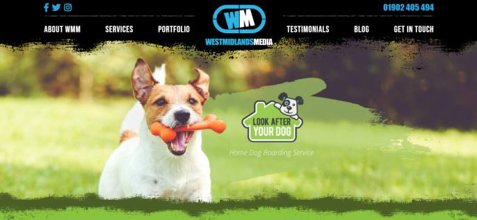Dog Daycare Website Upgrade