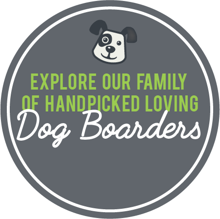 Explore our family of handpicked loving dog sitters