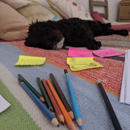 Pippa Cunningham Dog Boarder in brighton , East Sussex
