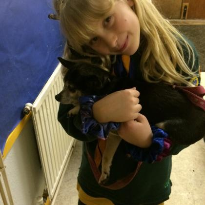 Nikki webb  Dog Boarder in Shoreham-by-sea, West Sussex