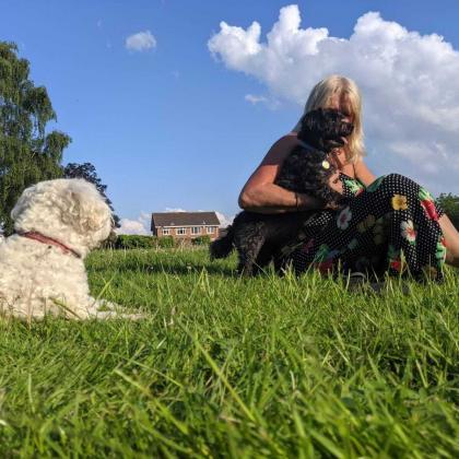 Mandy Jones Dog Boarder in Sutton Coldfield Birmingham , West Midlands
