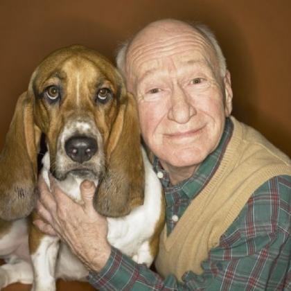 Test Account Dog Boarder in Wolverhampton, west midlands?>